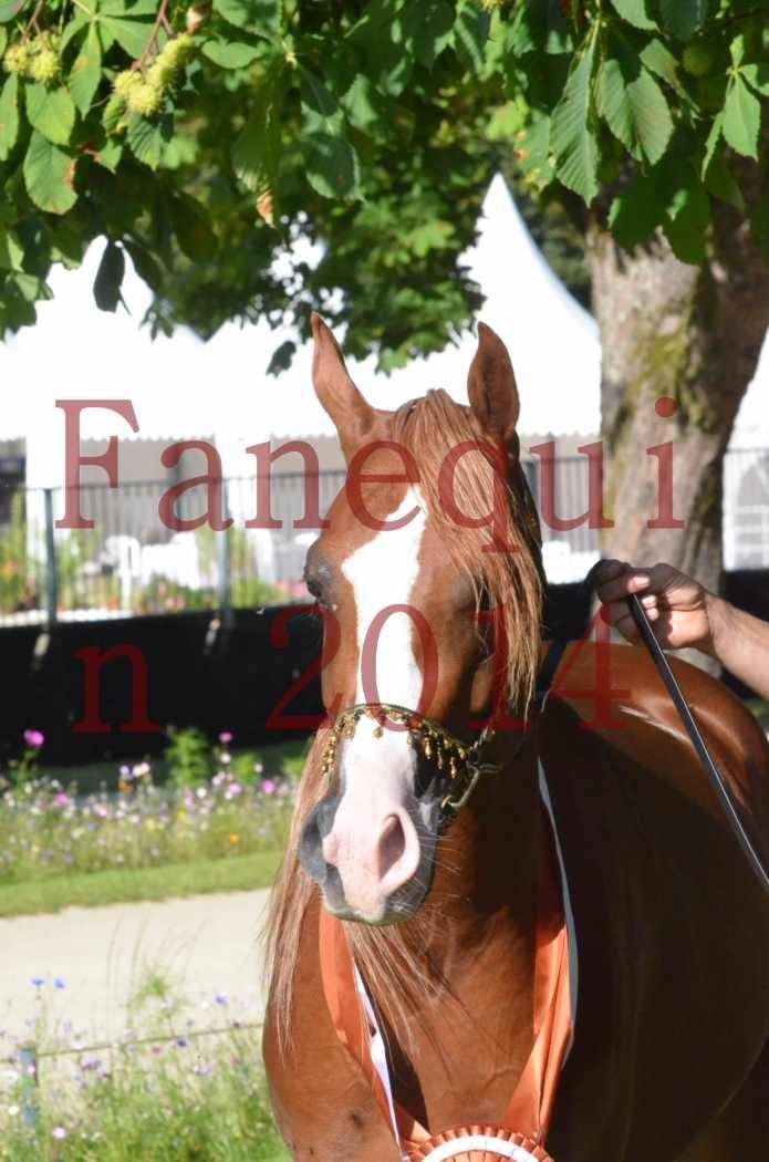 Championnat de FRANCE 2014 - Amateurs - SELECTO IBN SAMAWI - 208
