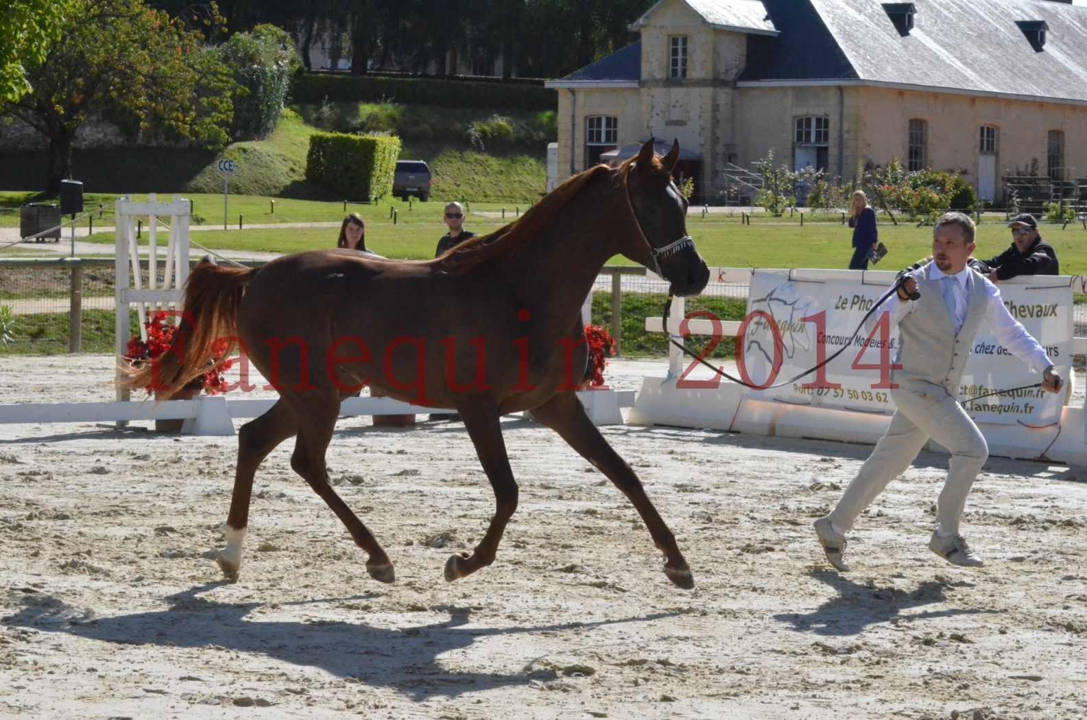 Championnat de FRANCE 2014 - Amateurs - LAMAL - 36