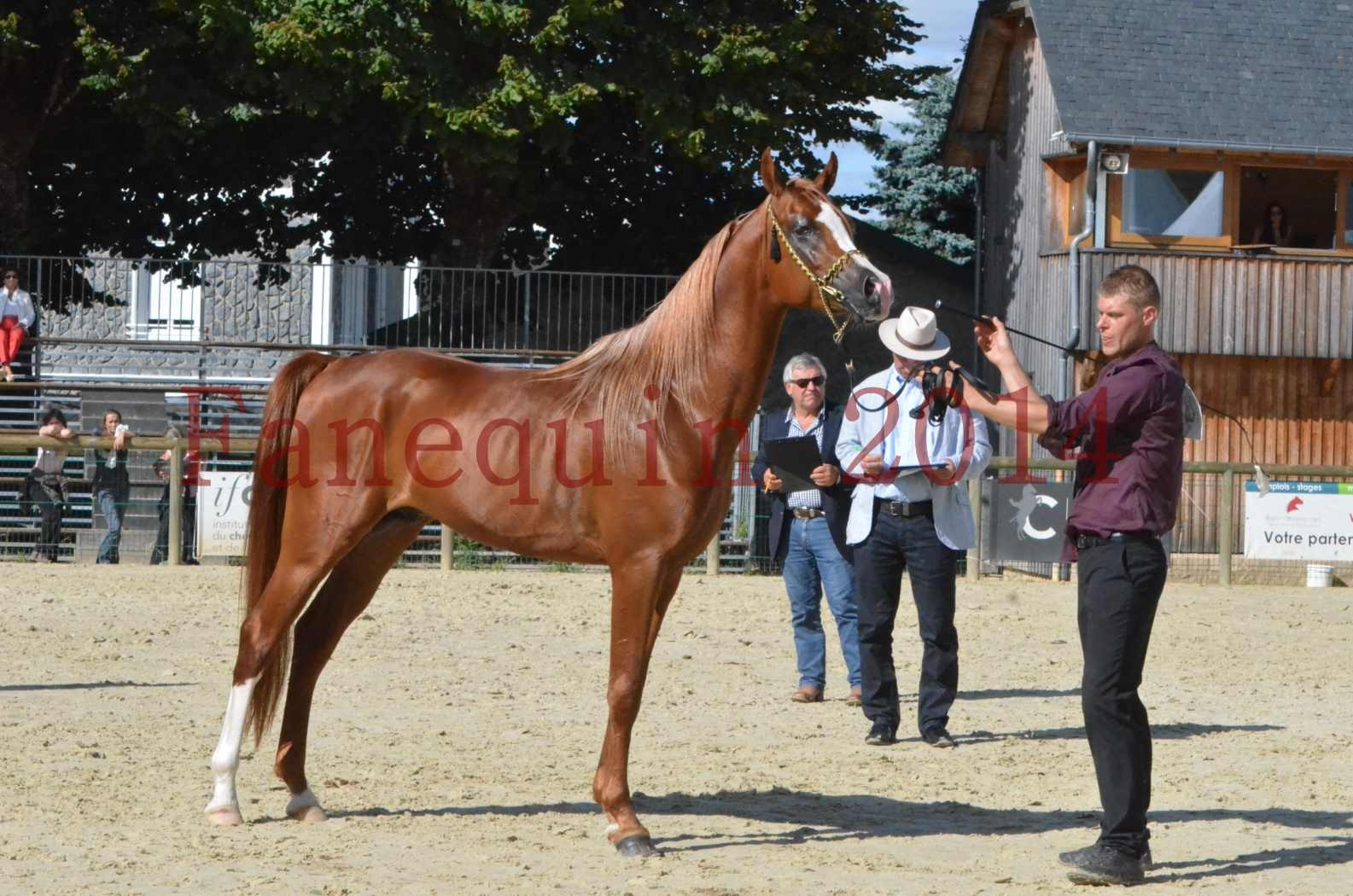 Championnat de FRANCE 2014 - Amateurs - SELECTO IBN SAMAWI - 075