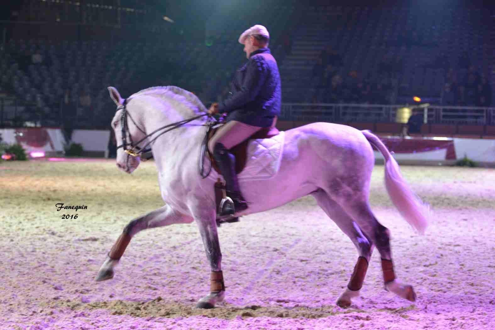 Cheval Passion 2016 - Présentation des LUSITANIENS - Ecurie de Max VENDRELL & Corinne BOUCHITTE - 13