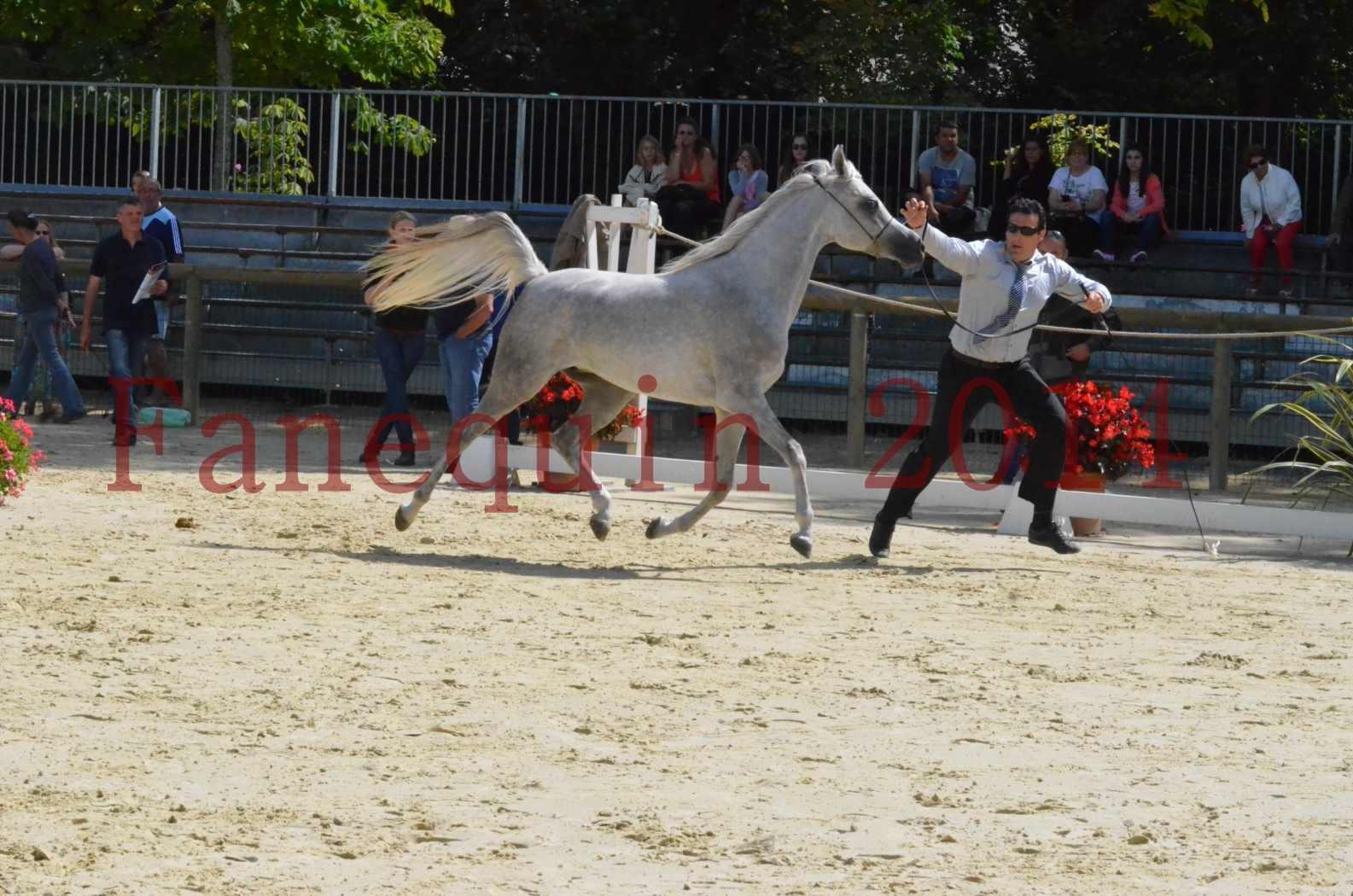 Championnat de FRANCE 2014 - Amateurs - VOLODIA DE LAFON - 018