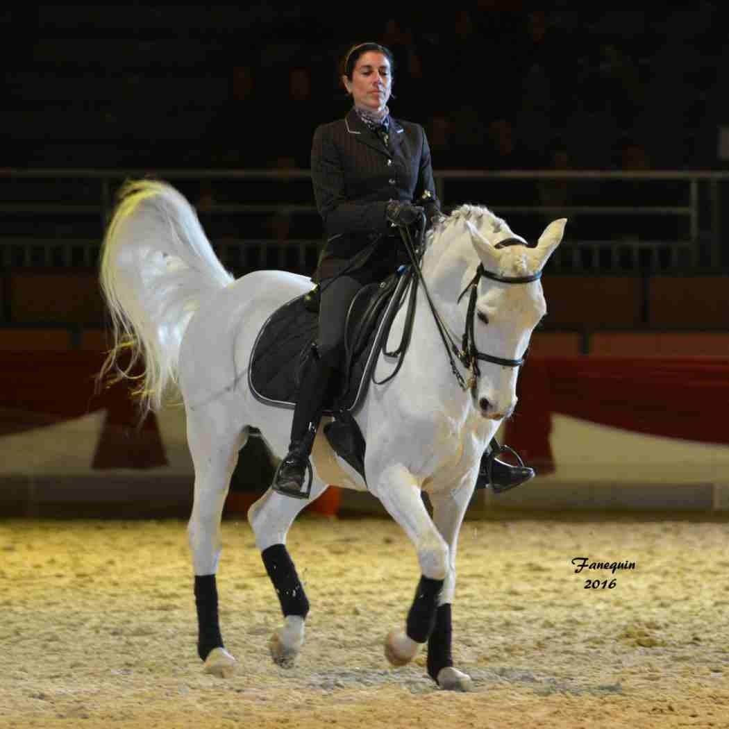 Cheval Passion 2016 - Présentation des LUSITANIENS - Ecurie de Max VENDRELL & Corinne BOUCHITTE - 45