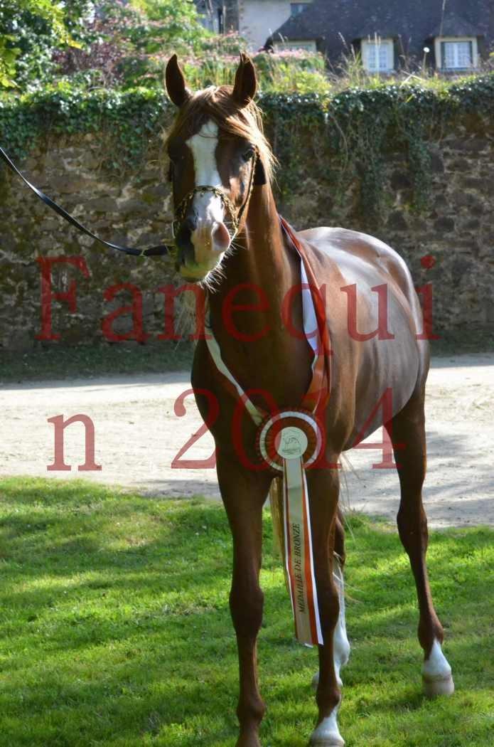 Championnat de FRANCE 2014 - Amateurs - SELECTO IBN SAMAWI - 183