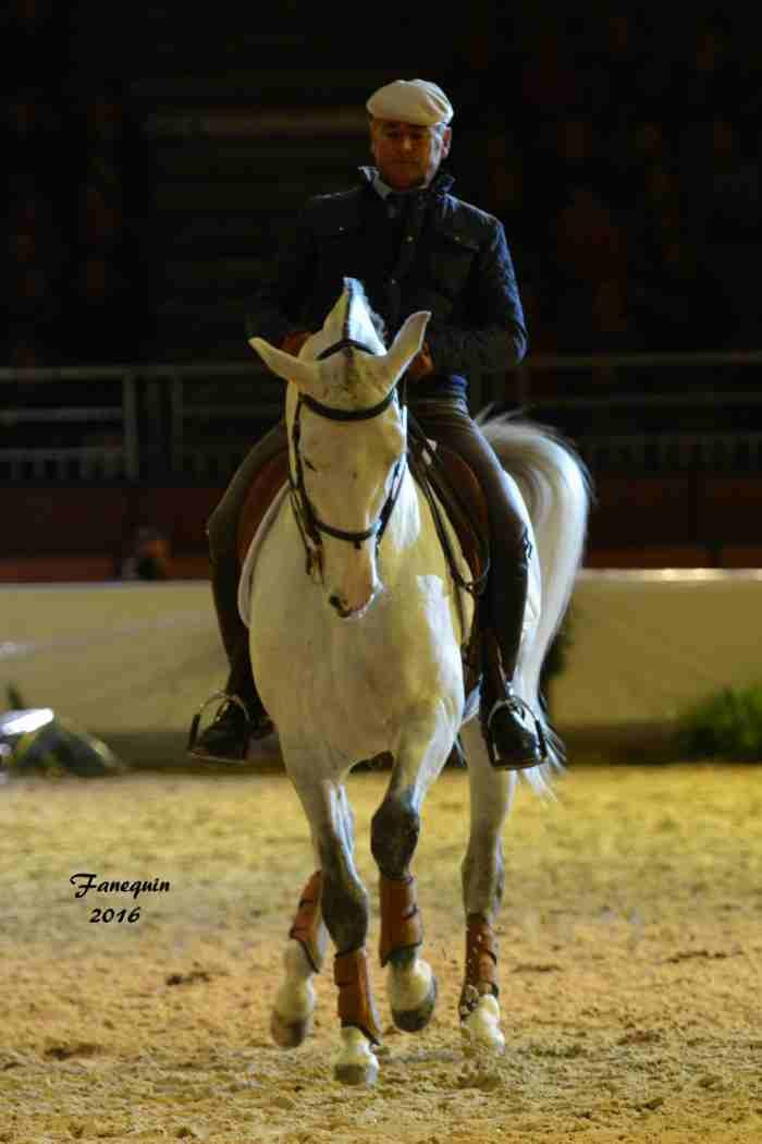 Cheval Passion 2016 - Présentation des LUSITANIENS - Ecurie de Max VENDRELL & Corinne BOUCHITTE - 27