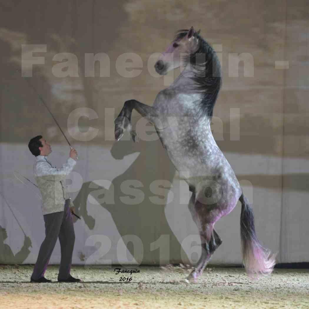 Cheval Passion 2016 - MISEC - Vincent LIBERATOR - 07