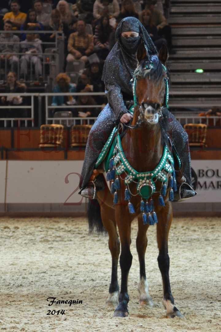 Show des races - Chevaux BARBE 07