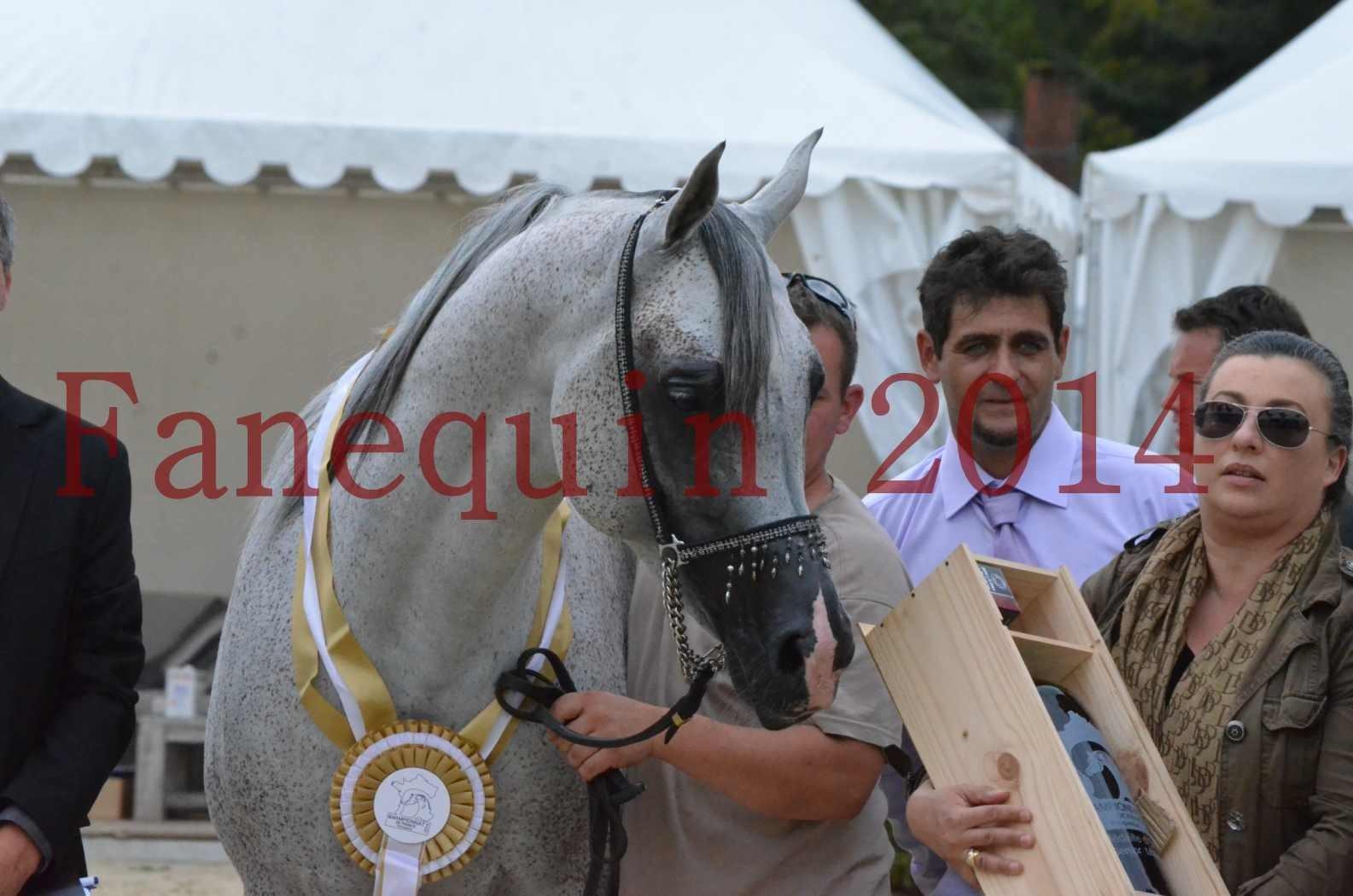 CHAMPIONNAT DE FRANCE  2014 A POMPADOUR - Championnat - SHEYK DE GARGASSAN - 25