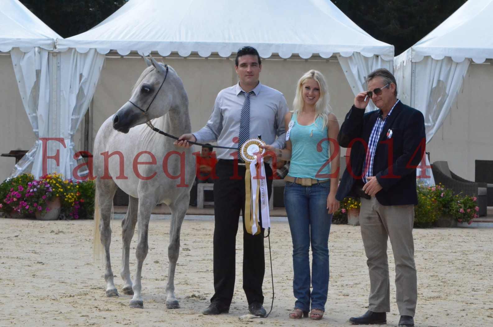 Championnat de FRANCE 2014 - Amateurs - VOLODIA DE LAFON - 101