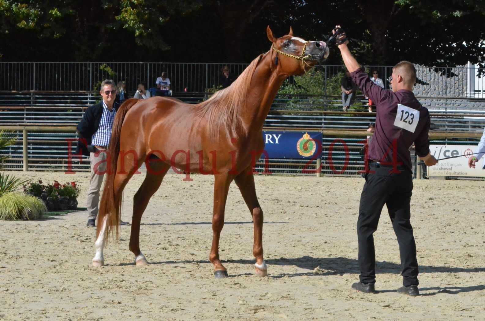 Championnat de FRANCE 2014 - Amateurs - SELECTO IBN SAMAWI - 073