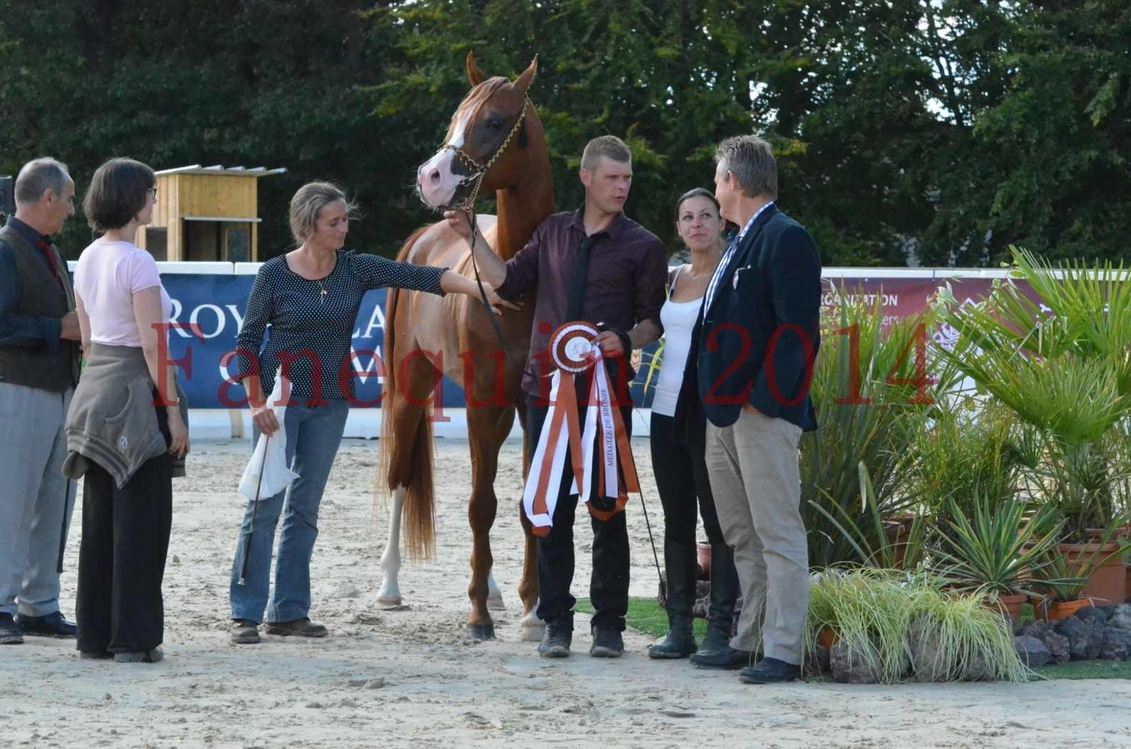 Championnat de FRANCE 2014 - Amateurs - SELECTO IBN SAMAWI - 100