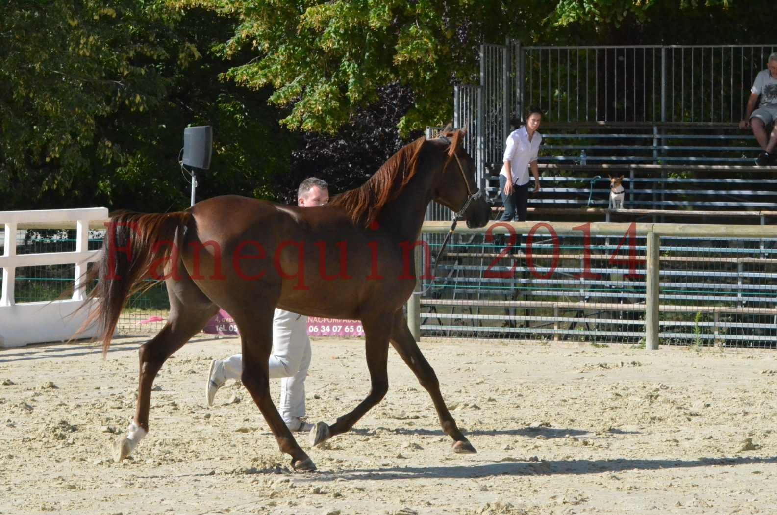 Championnat de FRANCE 2014 - Amateurs - LAMAL - 48