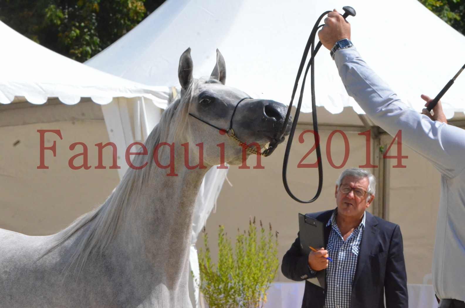 Championnat de FRANCE 2014 - Amateurs - VOLODIA DE LAFON - 074
