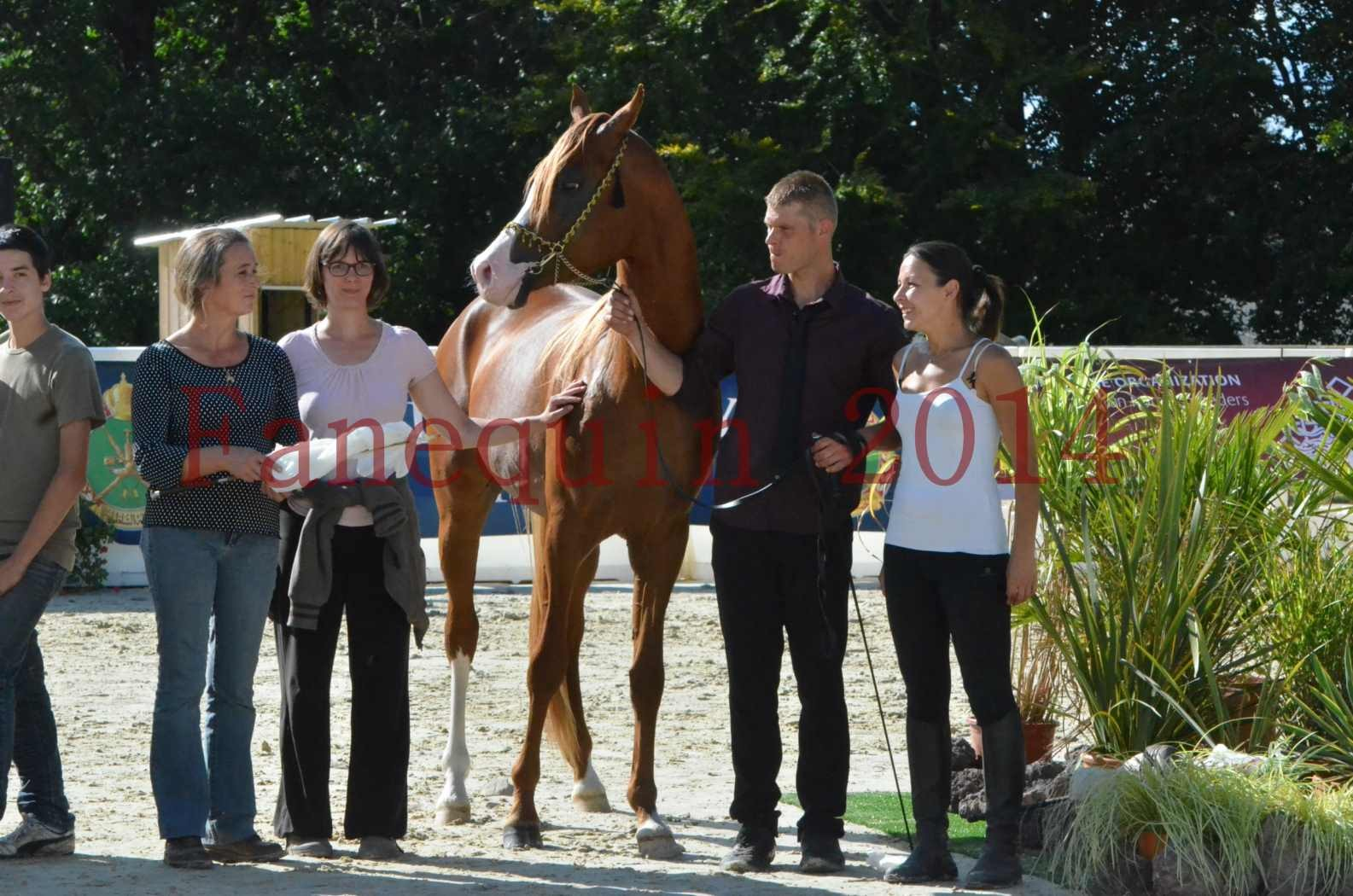 Championnat de FRANCE 2014 - Amateurs - SELECTO IBN SAMAWI - 091