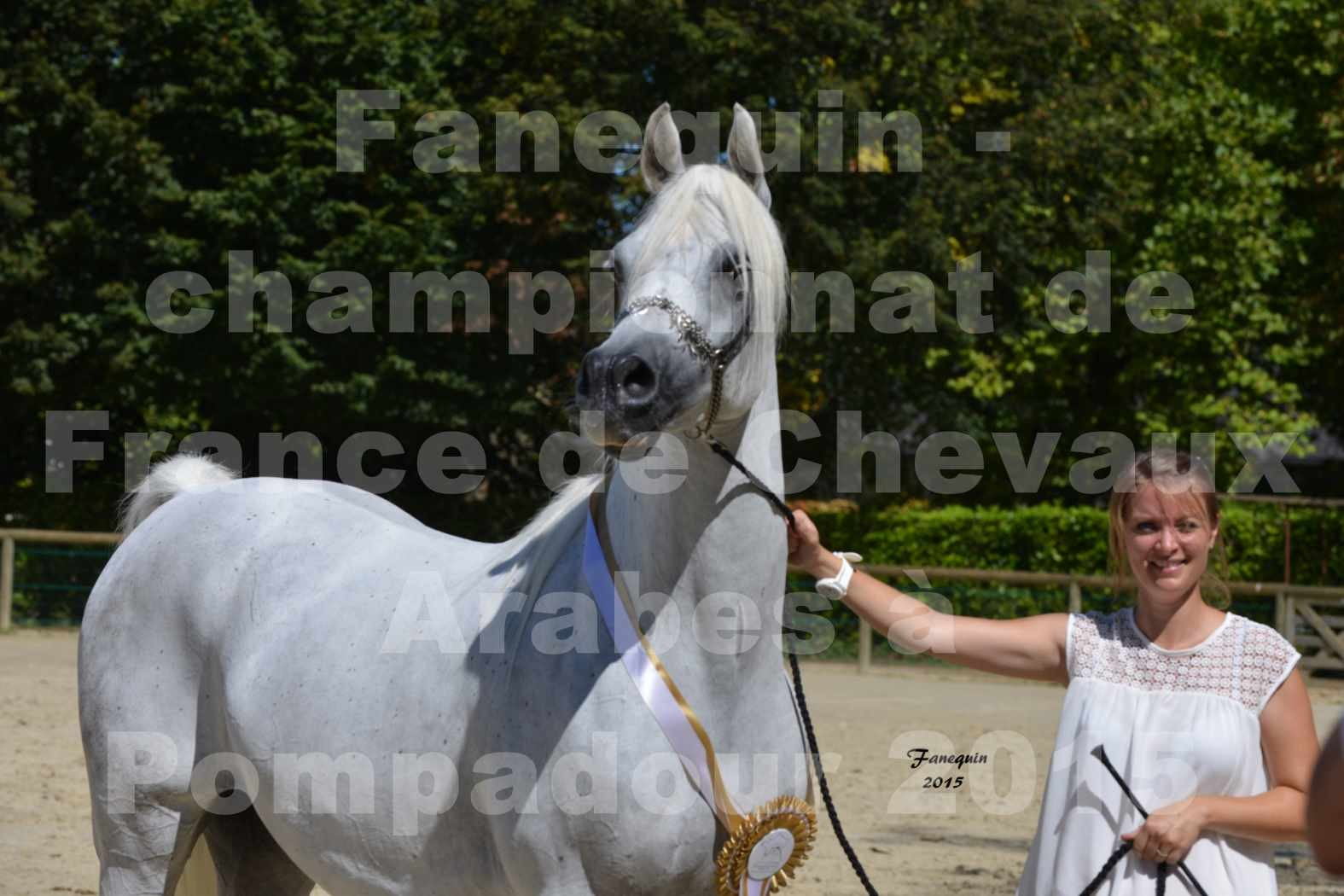 Championnat de FRANCE du cheval ARABE à POMPADOUR 2015 - Classes PROFESSIONNELS - HAADJA - 8