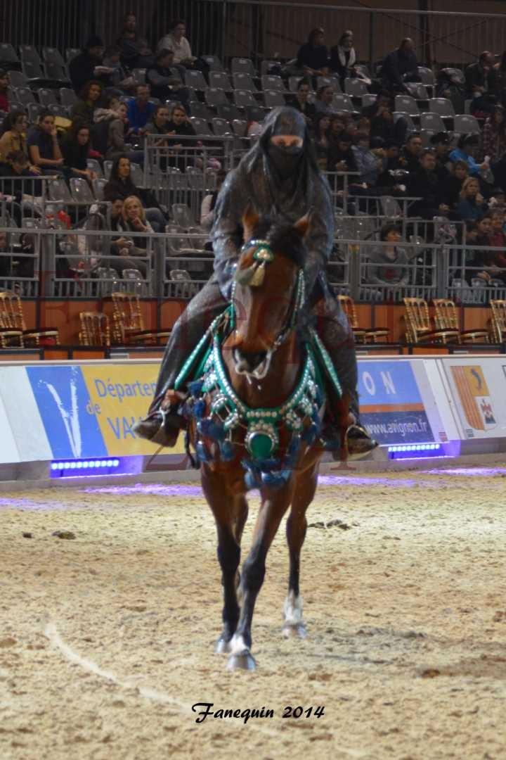 Show des races - Chevaux BARBE 08