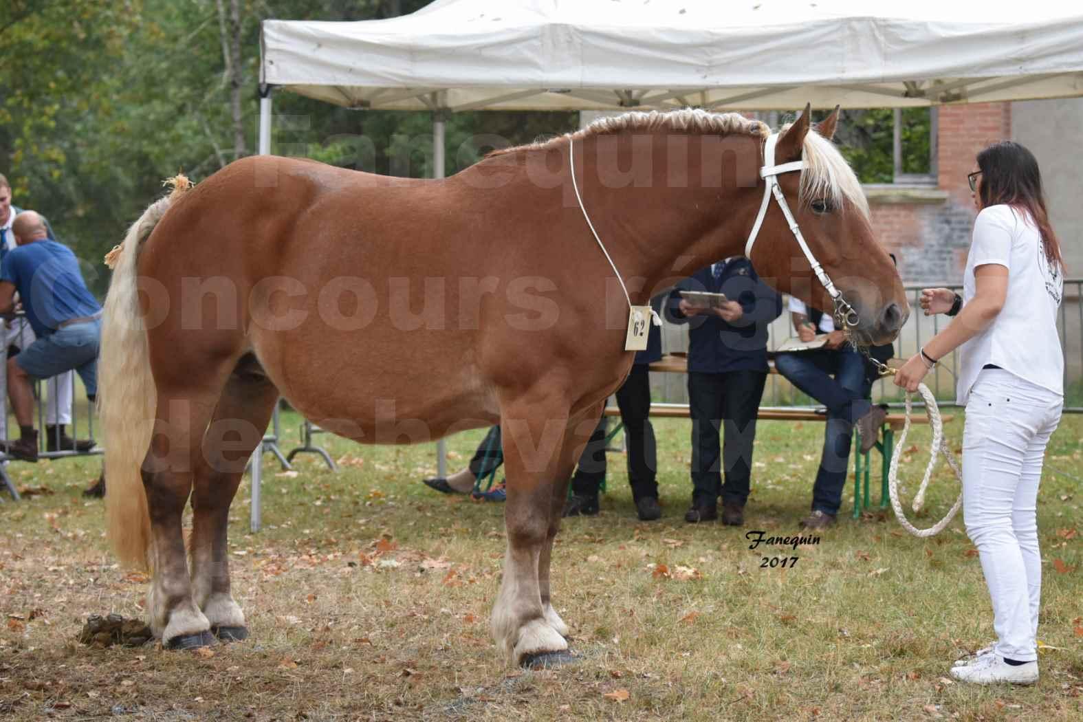Concours Régional de chevaux de traits en 2017 - Jument & Poulain Trait COMTOIS - DAKOTA DU GARRIC - 01