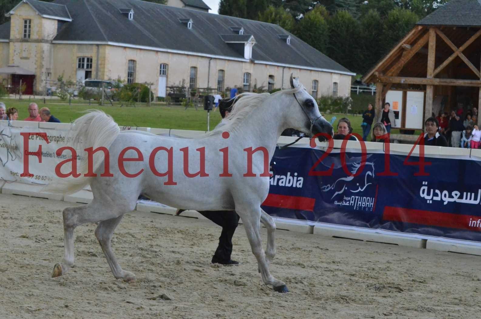 CHAMPIONNAT DE FRANCE 2014 A POMPADOUR - Sélection - FA STARLIGHT - 09