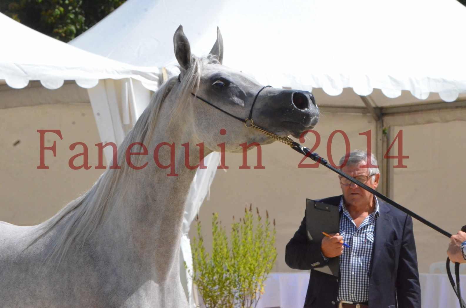 Championnat de FRANCE 2014 - Amateurs - VOLODIA DE LAFON - 073