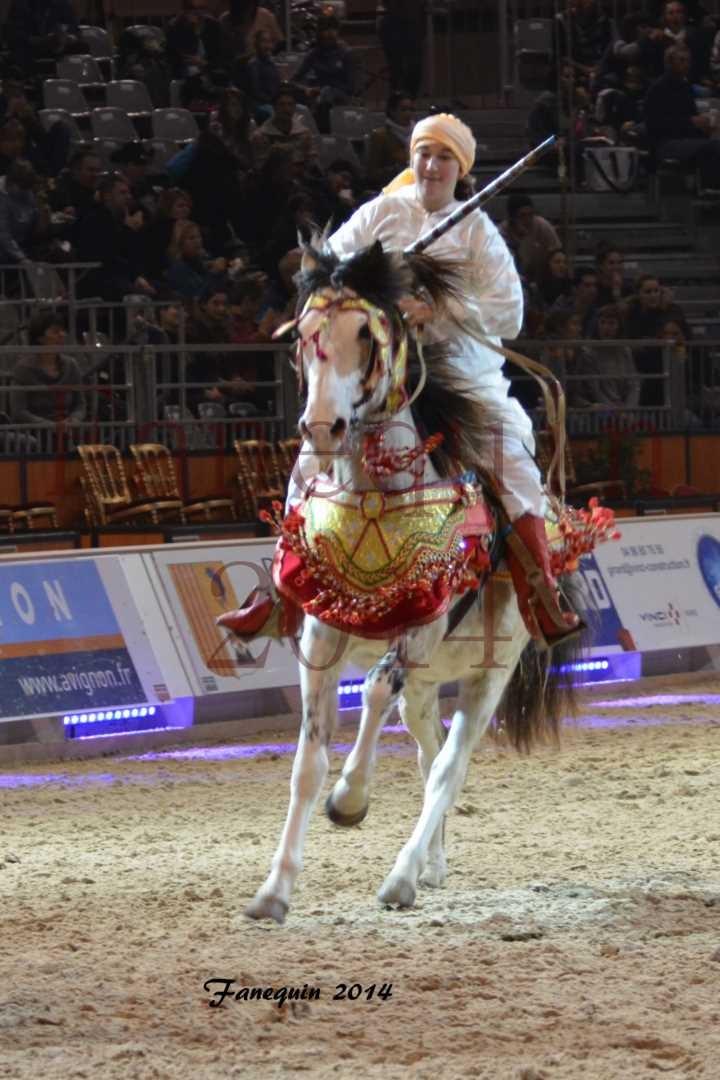 Show des races - Chevaux BARBE 20