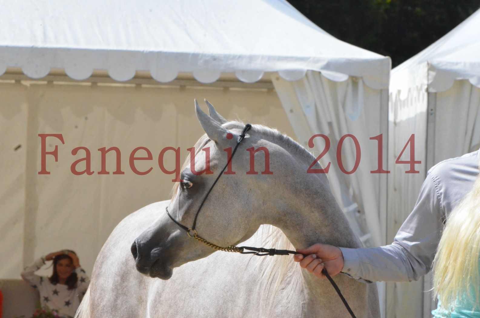 Championnat de FRANCE 2014 - Amateurs - VOLODIA DE LAFON - 089