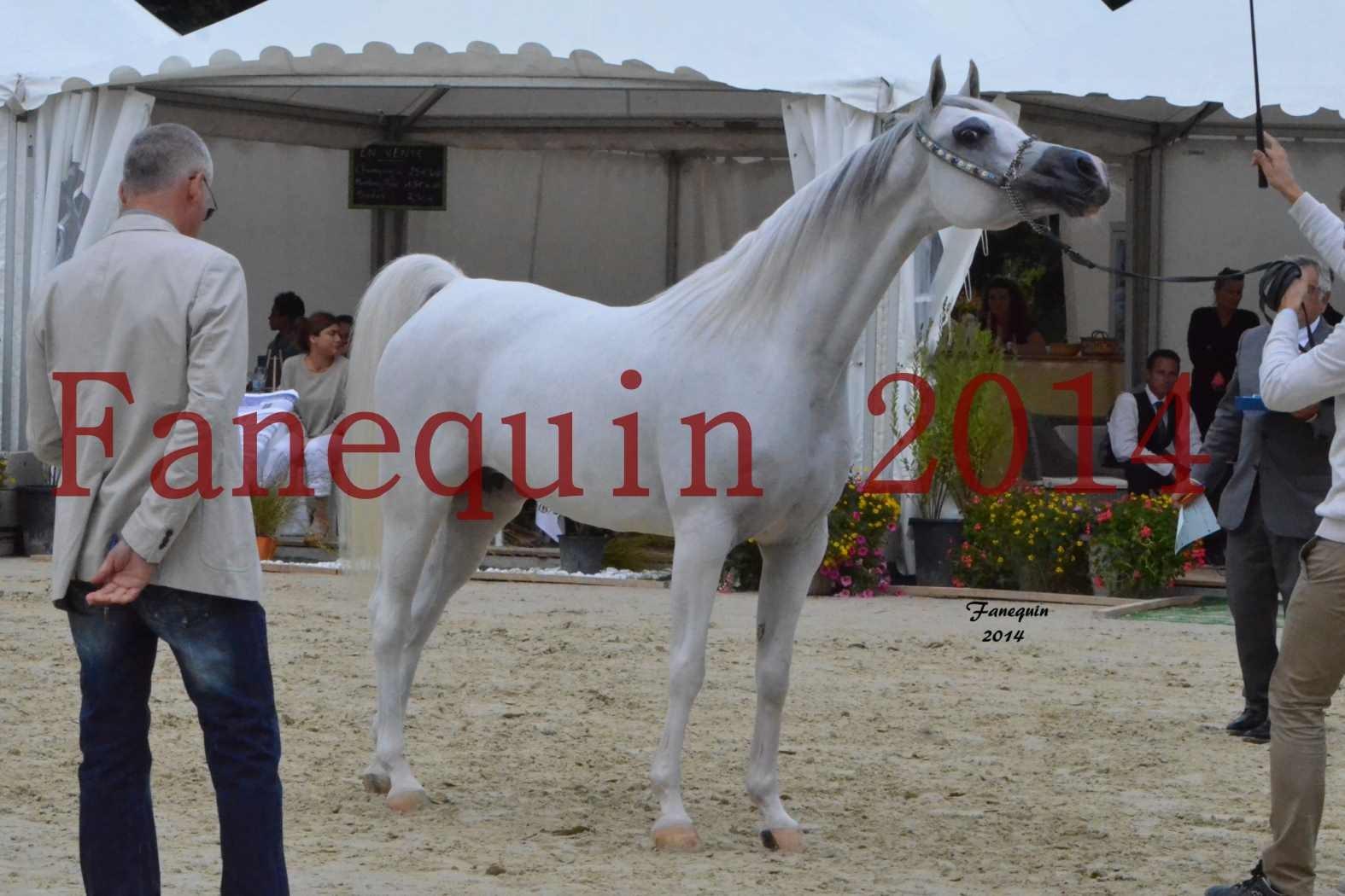 CHAMPIONNAT DE FRANCE 2014 A POMPADOUR - Notre Sélection - BLEUENN MILIN AVEL - 07