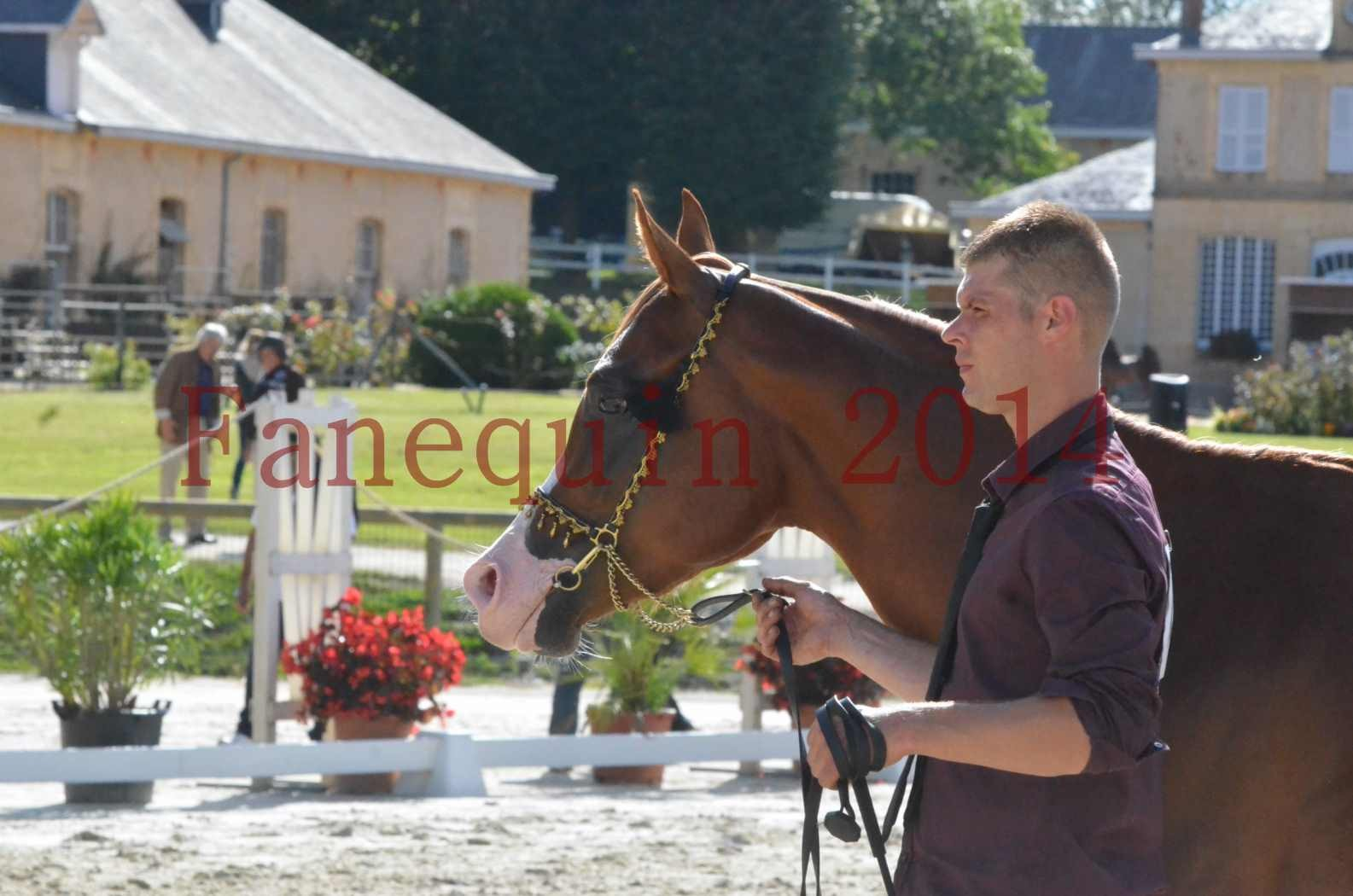 Championnat de FRANCE 2014 - Amateurs - SELECTO IBN SAMAWI - 113