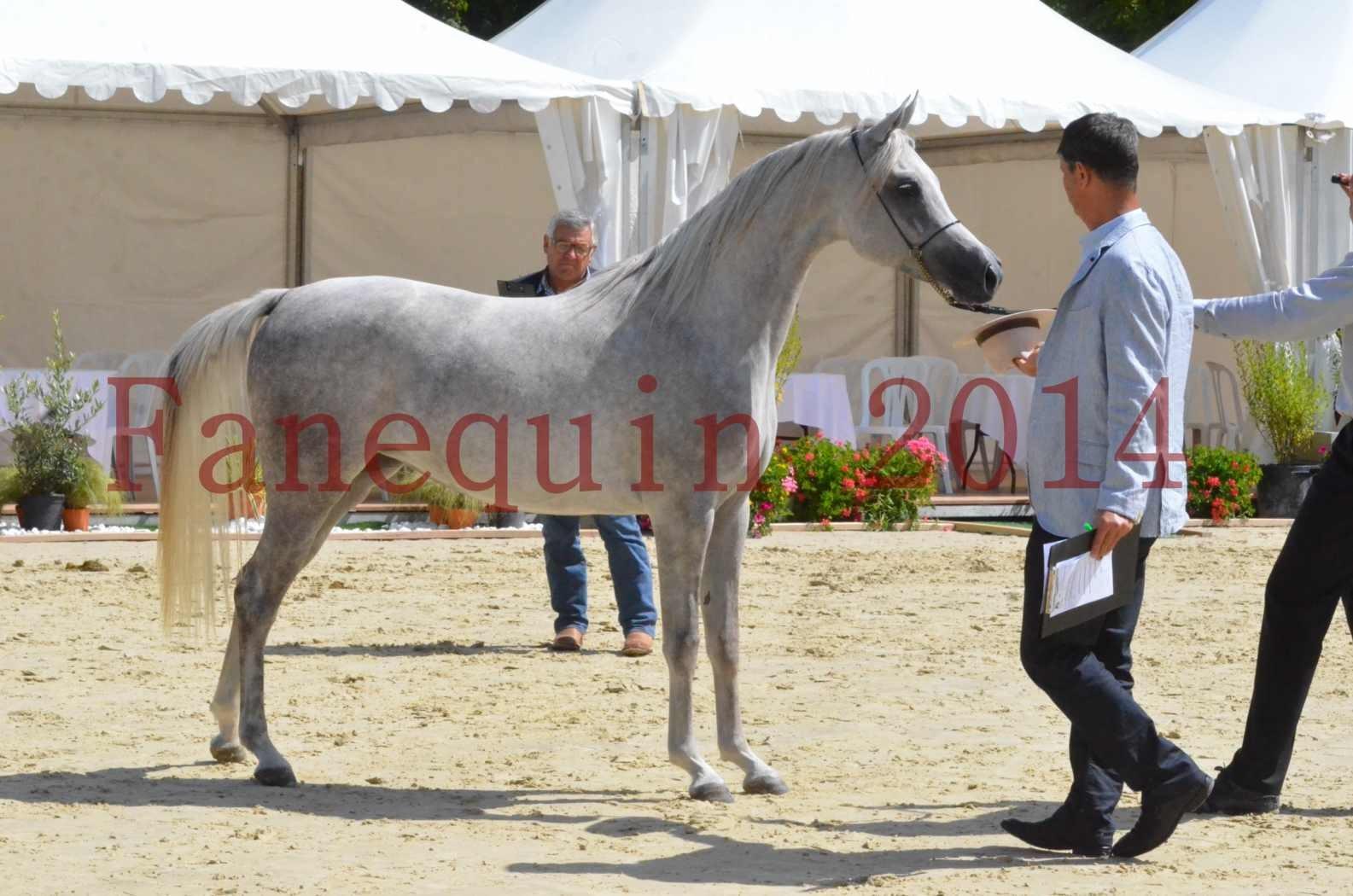 Championnat de FRANCE 2014 - Amateurs - VOLODIA DE LAFON - 061