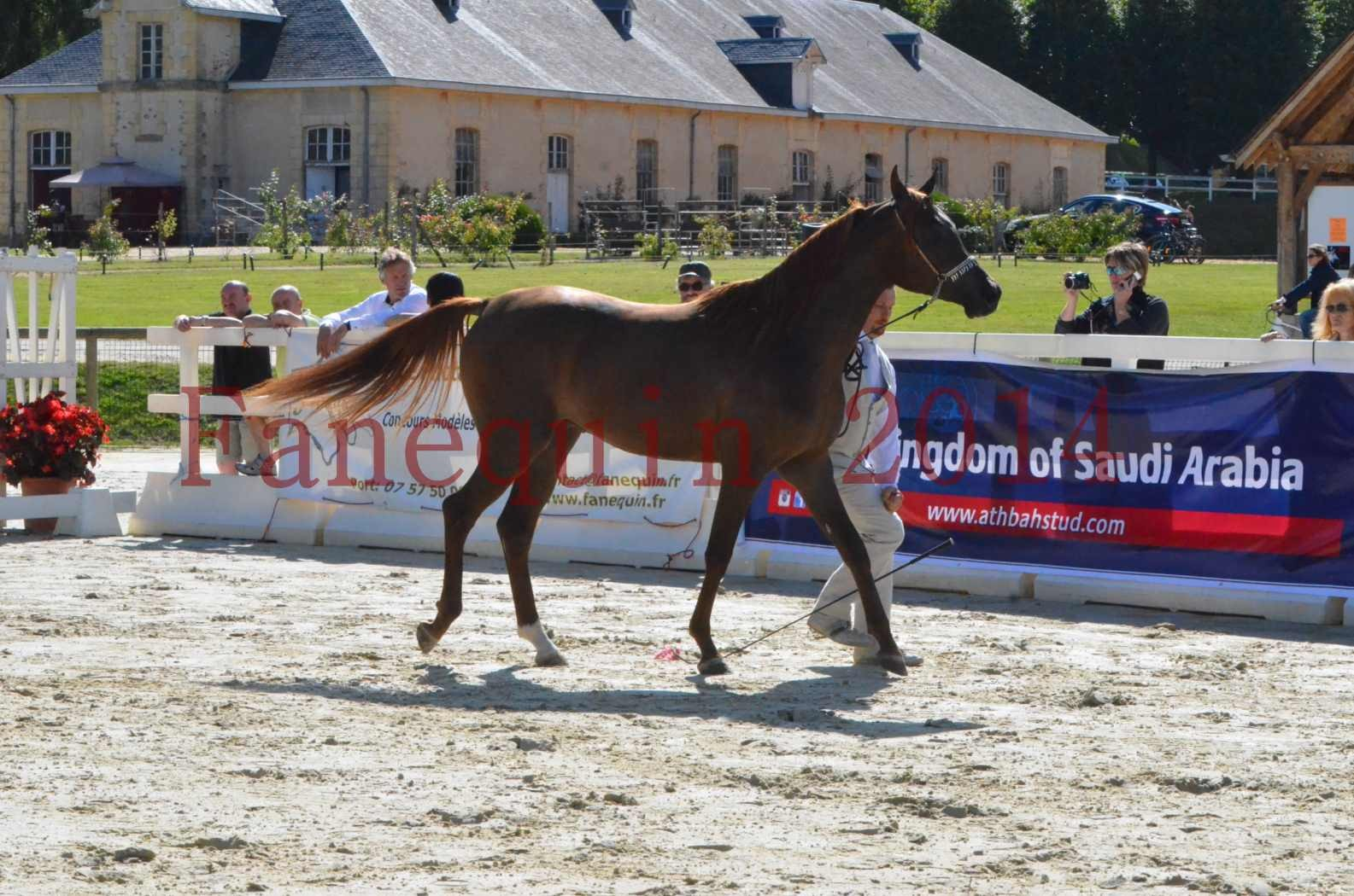 Championnat de FRANCE 2014 - Amateurs - LAMAL - 23