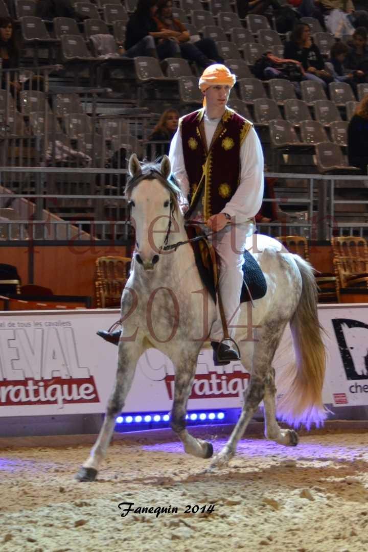 Show des races - Chevaux BARBE 35