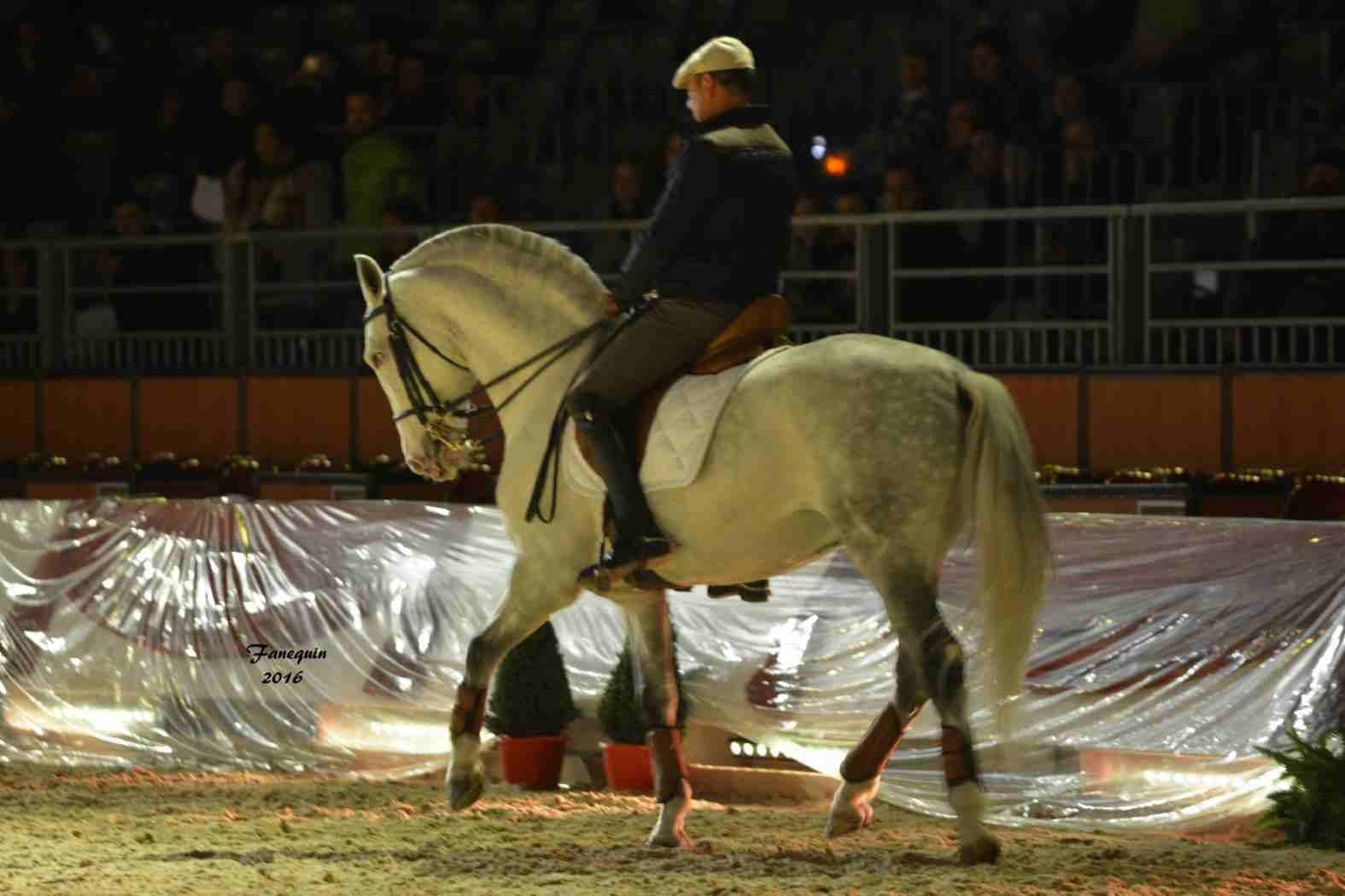 Cheval Passion 2016 - Présentation des LUSITANIENS - Ecurie de Max VENDRELL & Corinne BOUCHITTE - 18