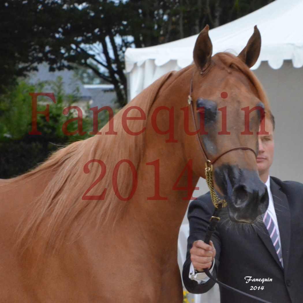 CHAMPIONNAT DE FRANCE 2014 A POMPADOUR - Notre Sélection - Portraits - LUTFINAH JA - 01