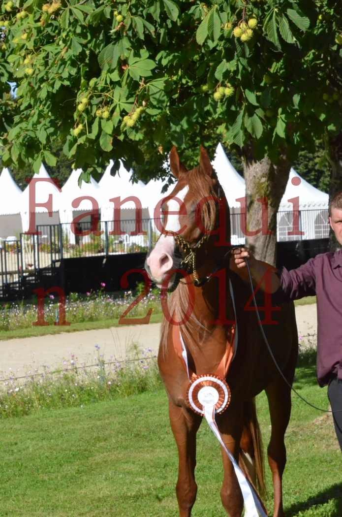 Championnat de FRANCE 2014 - Amateurs - SELECTO IBN SAMAWI - 206