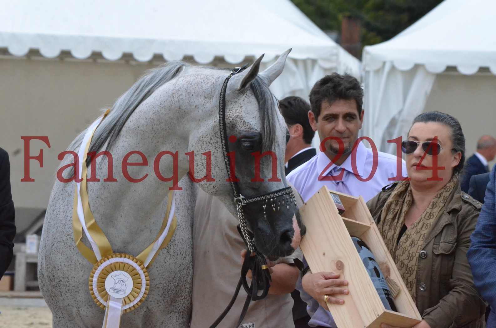 CHAMPIONNAT DE FRANCE  2014 A POMPADOUR - Championnat - SHEYK DE GARGASSAN - 27