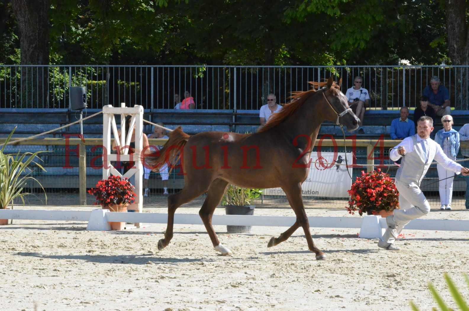 Championnat de FRANCE 2014 - Amateurs - LAMAL - 27