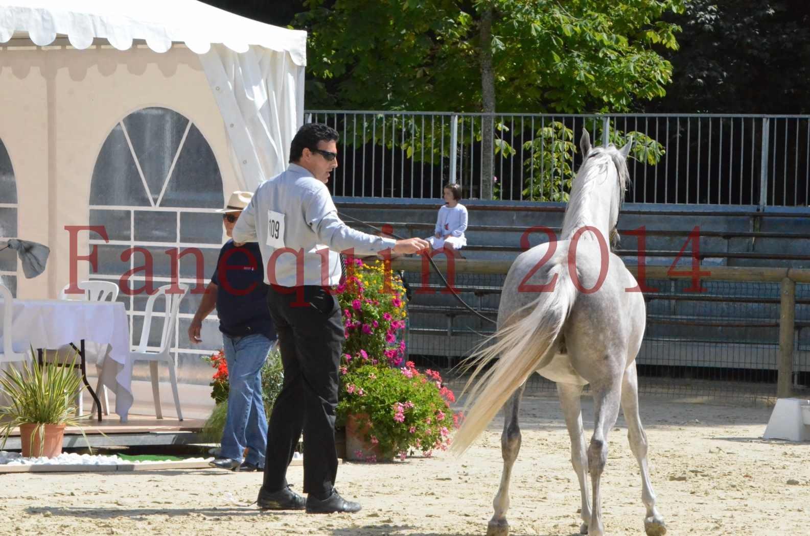Championnat de FRANCE 2014 - Amateurs - VOLODIA DE LAFON - 056
