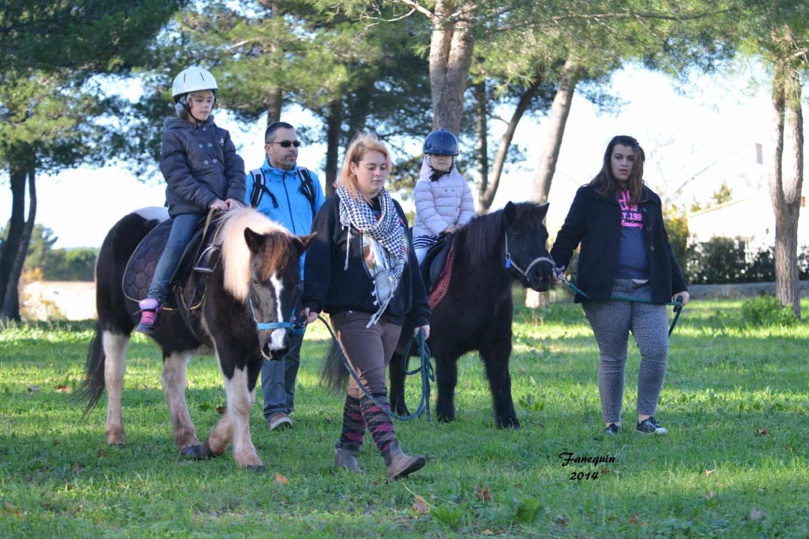 Marchés de Noël 2014 - Promenades en Poneys à Pignan - 31
