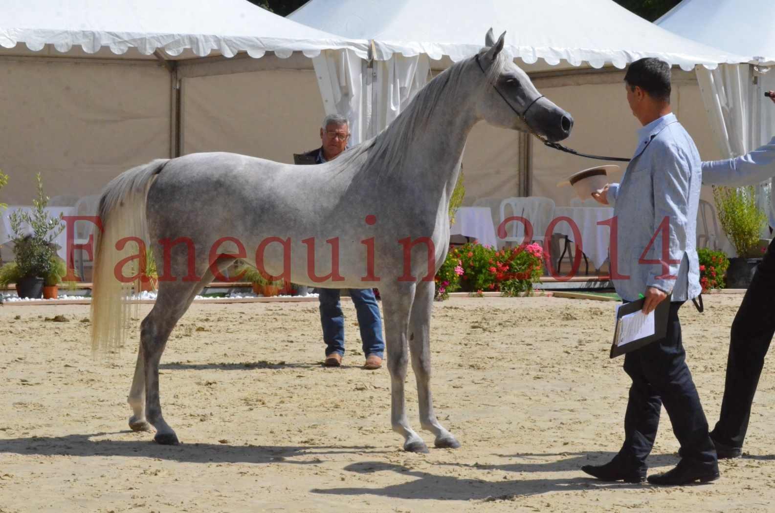 Championnat de FRANCE 2014 - Amateurs - VOLODIA DE LAFON - 058