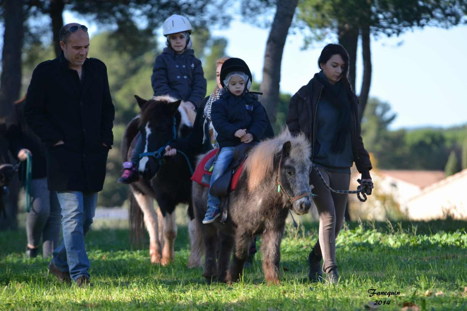 Marchés de Noël 2014 - Promenades en Poneys à Pignan - 22