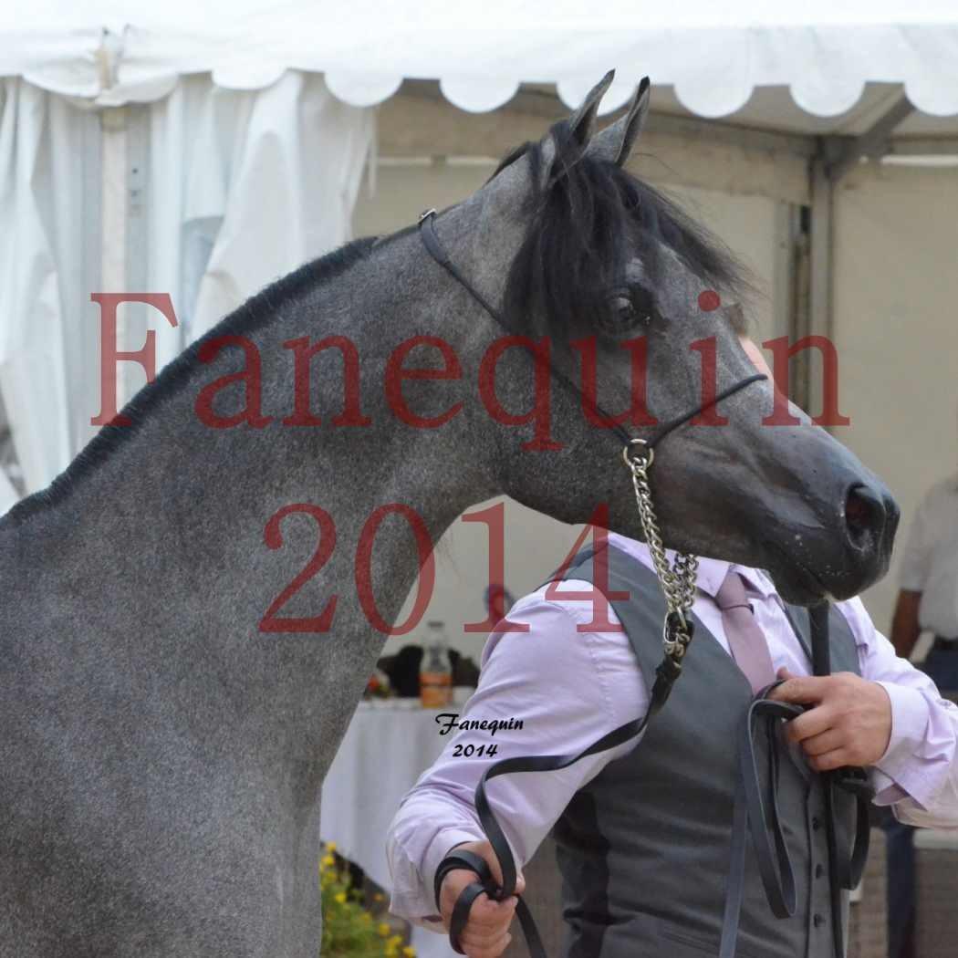 CHAMPIONNAT DE FRANCE 2014 A POMPADOUR - Notre Sélection - Portraits - AL MINYA - 1