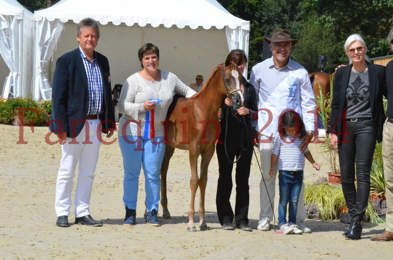 CHAMPIONNAT DE FRANCE 2014 A POMPADOUR - Championnat - TSAR KENZA - 98