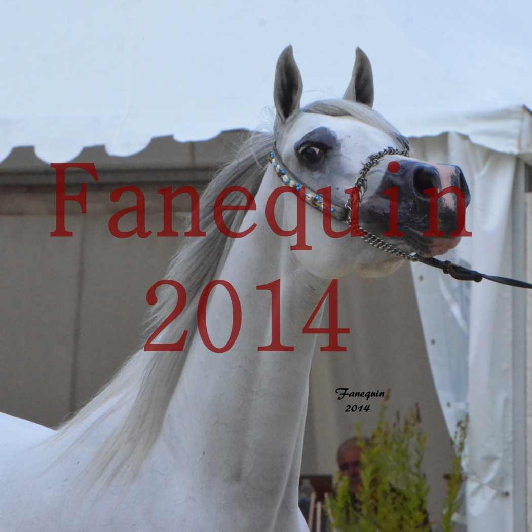 CHAMPIONNAT DE FRANCE 2014 A POMPADOUR - Notre Sélection - Portraits - BLEUENN MILIN AVEL - 1