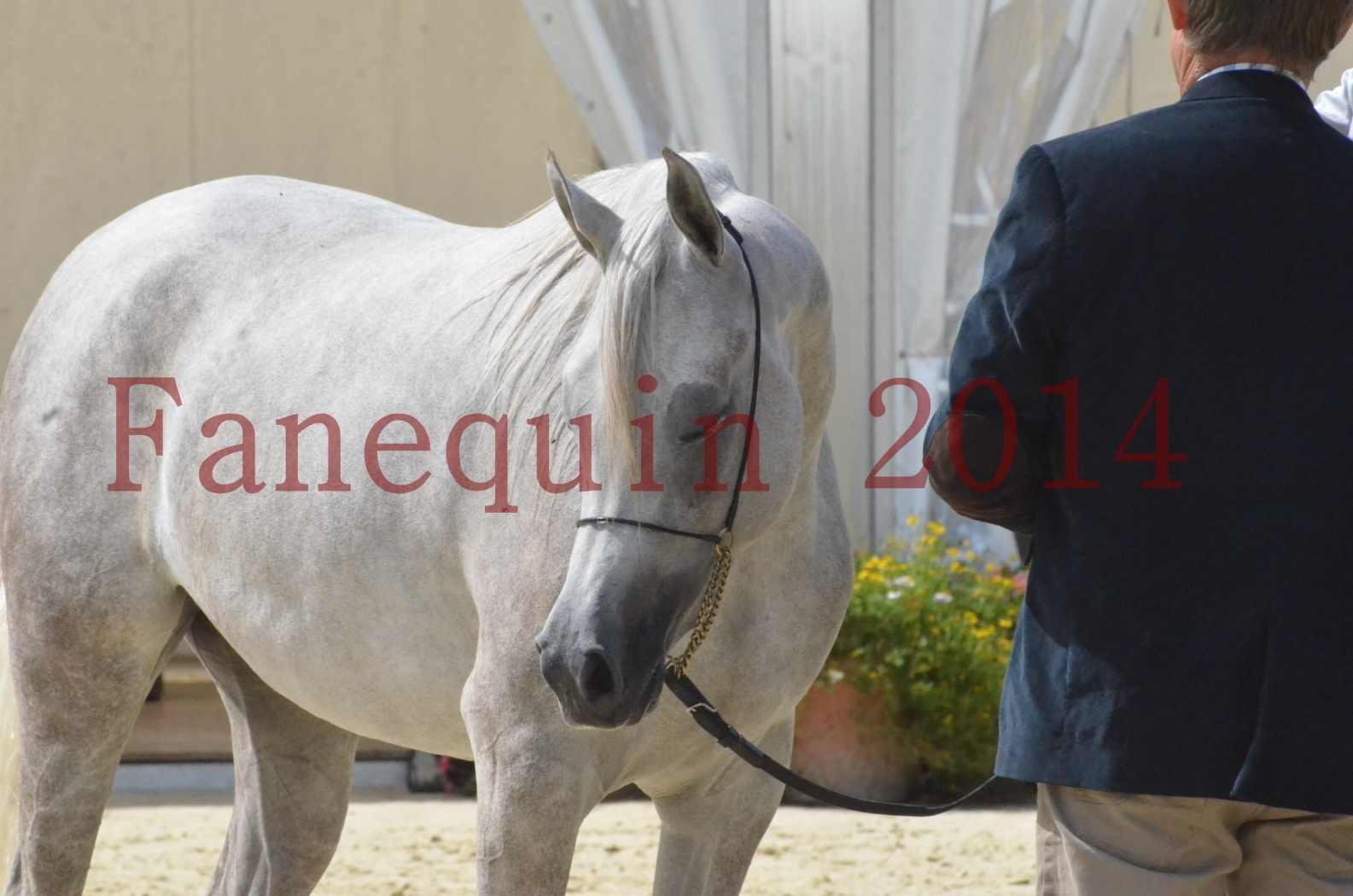 Championnat de FRANCE 2014 - Amateurs - VOLODIA DE LAFON - 088