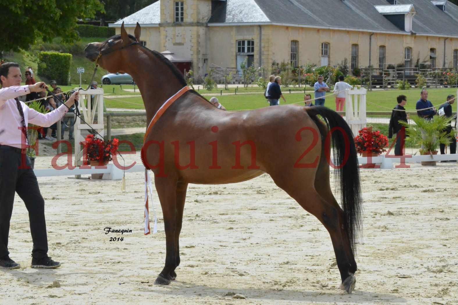 CHAMPIONNAT DE FRANCE 2014 A POMPADOUR - Notre Sélection - KARAWAN ALBIDAYER - 06