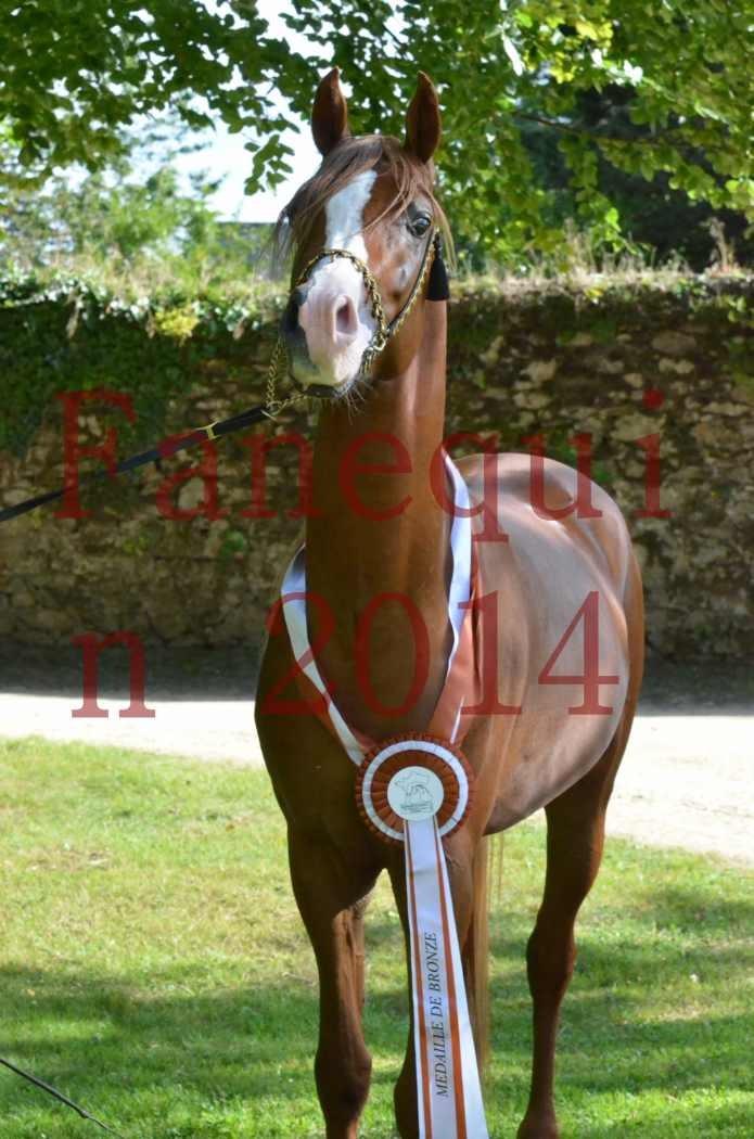 Championnat de FRANCE 2014 - Amateurs - SELECTO IBN SAMAWI - 172