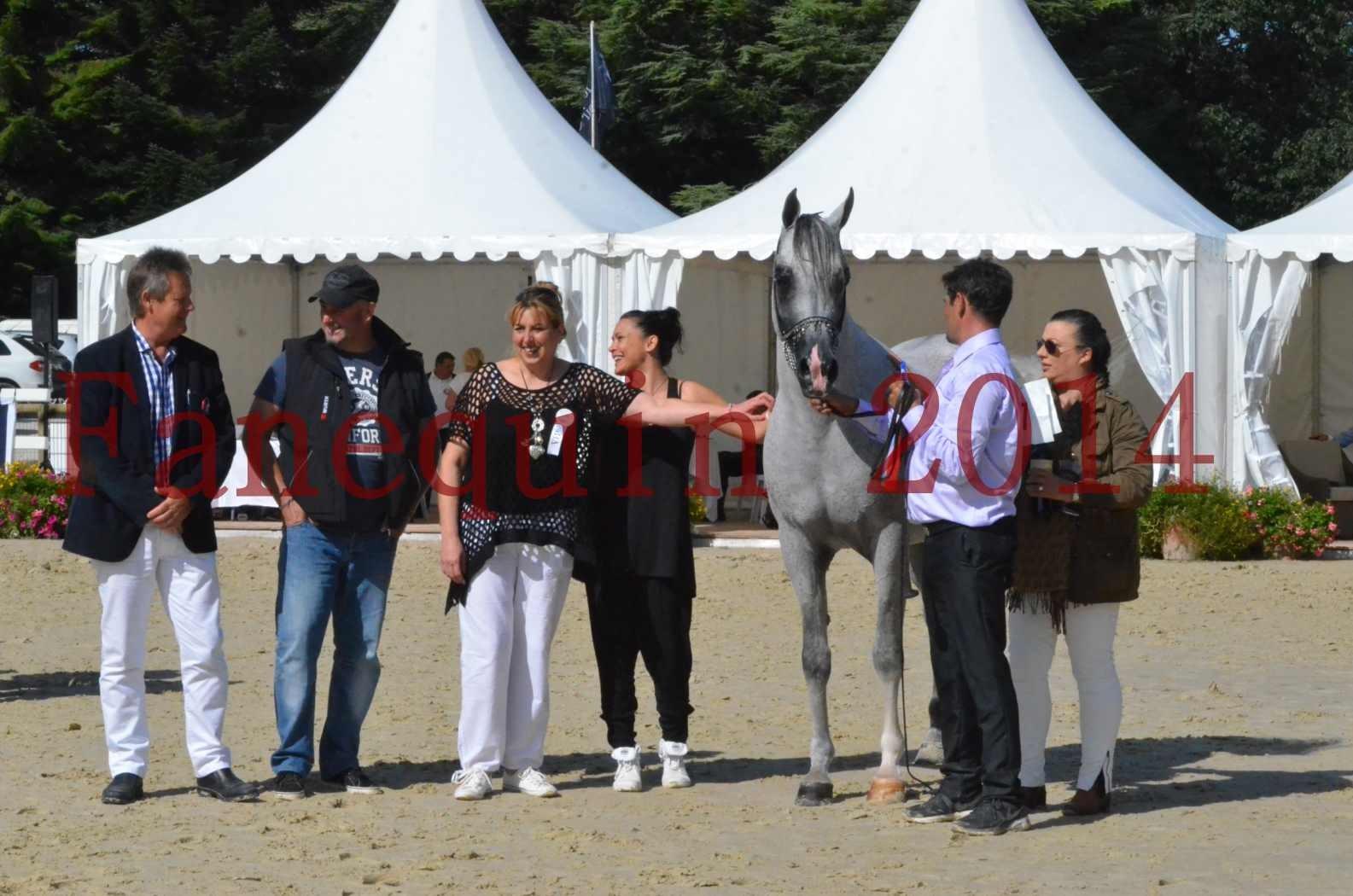 CHAMPIONNAT DE FRANCE  2014 A POMPADOUR - Sélection - SHEYK DE GARGASSAN - 20