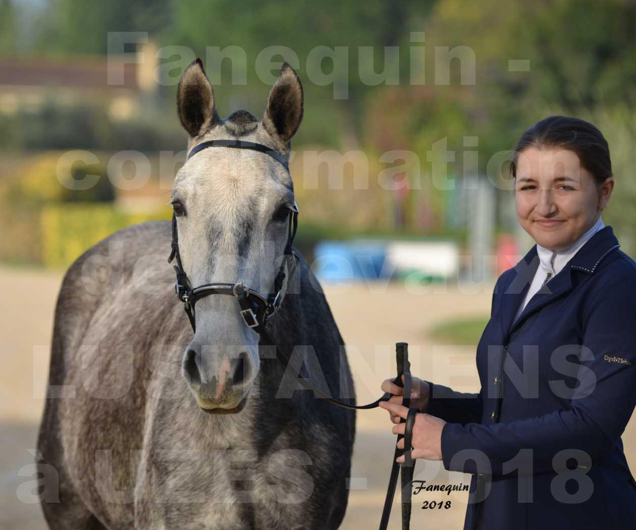 Confirmation de chevaux LUSITANIENS aux Haras d'UZES Novembre 2018 - DALIA DU CLOS - Portraits - 2