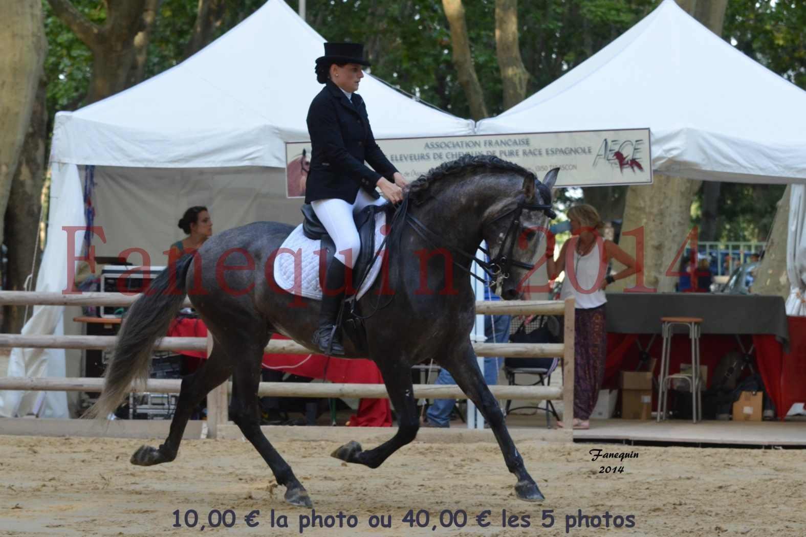 Championnat de FRANCE de PRE-présentation montés-05