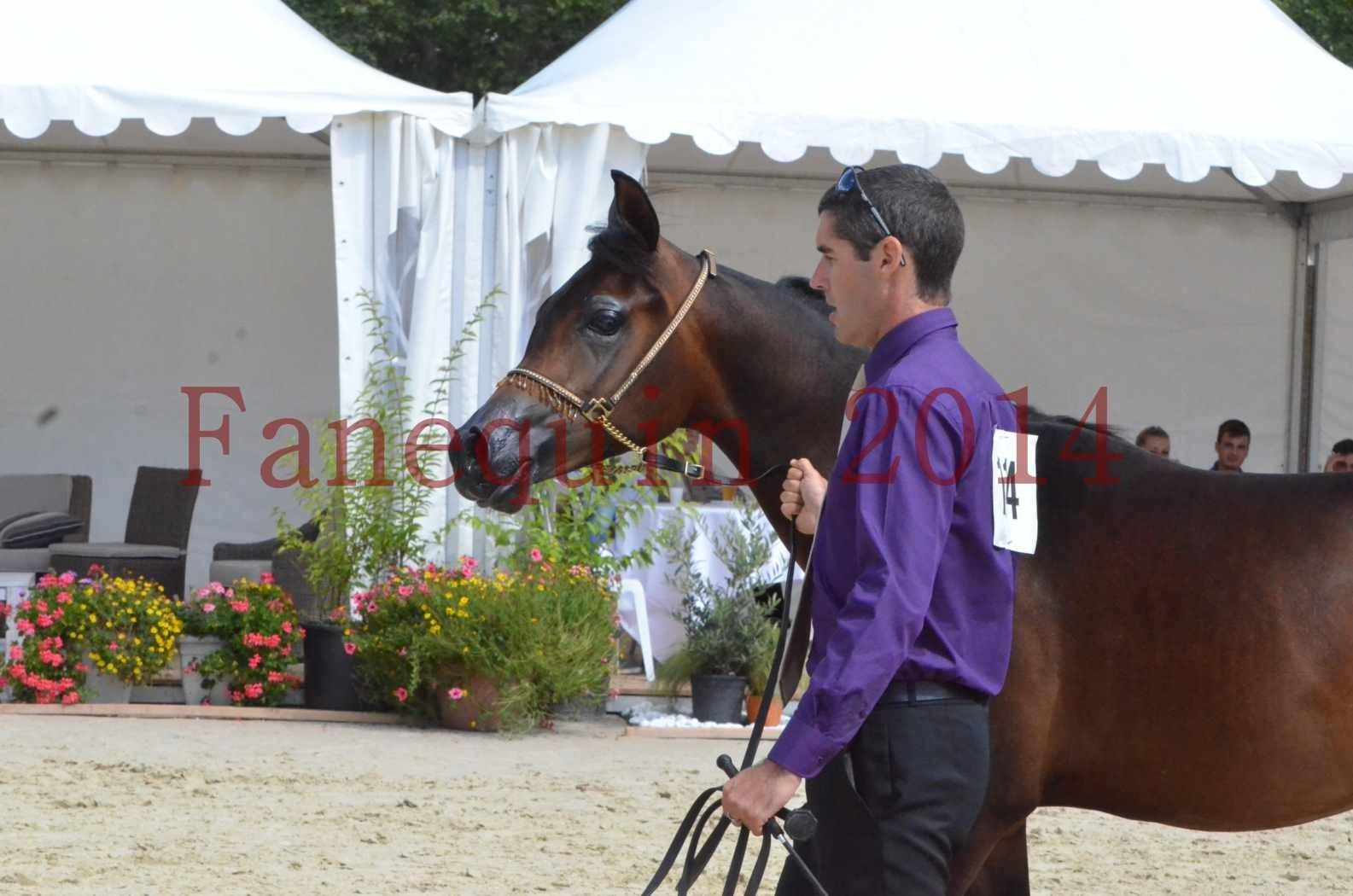 Championnat de FRANCE 2014 - Amateurs - SH FARAJAA - 31