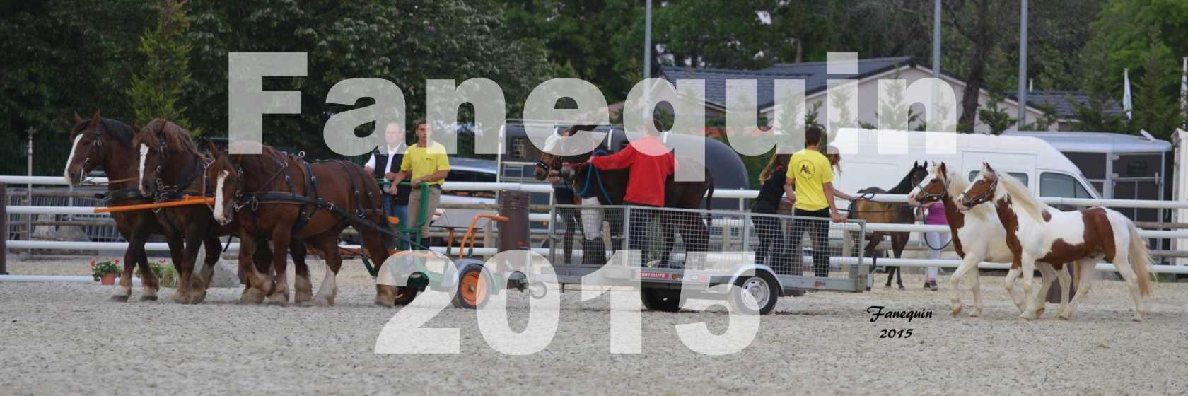 Salon Equitaine de Bordeaux 2015