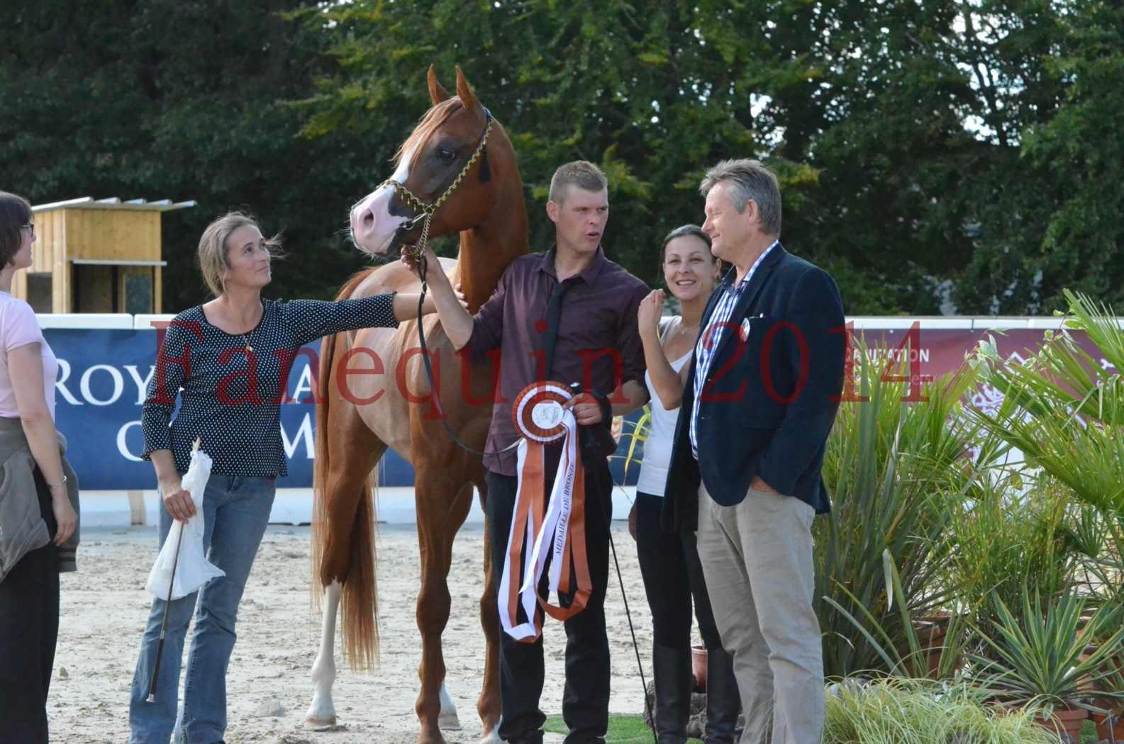 Championnat de FRANCE 2014 - Amateurs - SELECTO IBN SAMAWI - 099